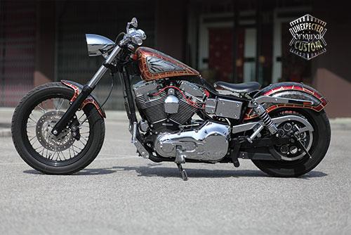 Beau Harley Davidson Dyna Snake