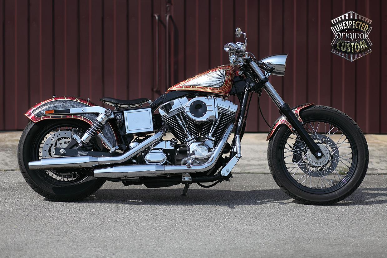 Harley Davidson Dyna The Snake: UNEXPECTED CUSTOM