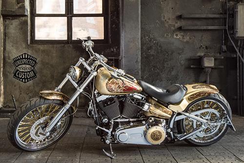 MEDUSA. Harley Davidson Softail